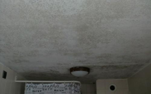 D.m.v. thermografie zijn de lekken gelokaliseerd (zie ook volgende foto)